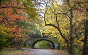 edgewood-park